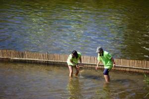 Bamboo Fishing 034