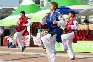 Taekwondo 1 039