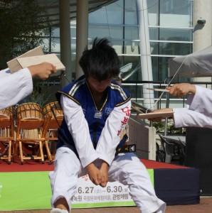 Taekwondo 4 043