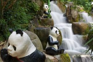 Waterfall - Pandas 026