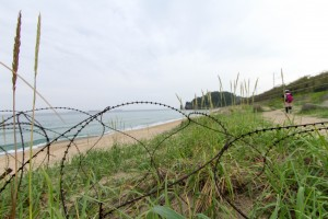 Barbed Wire and Beach