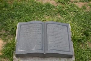Yeouido - King Sejong - Book (1 of 1)