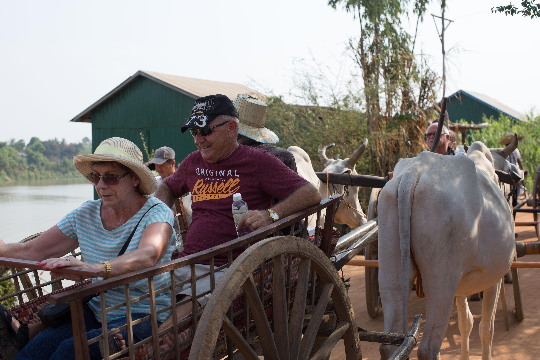 Ox Cart 1-1