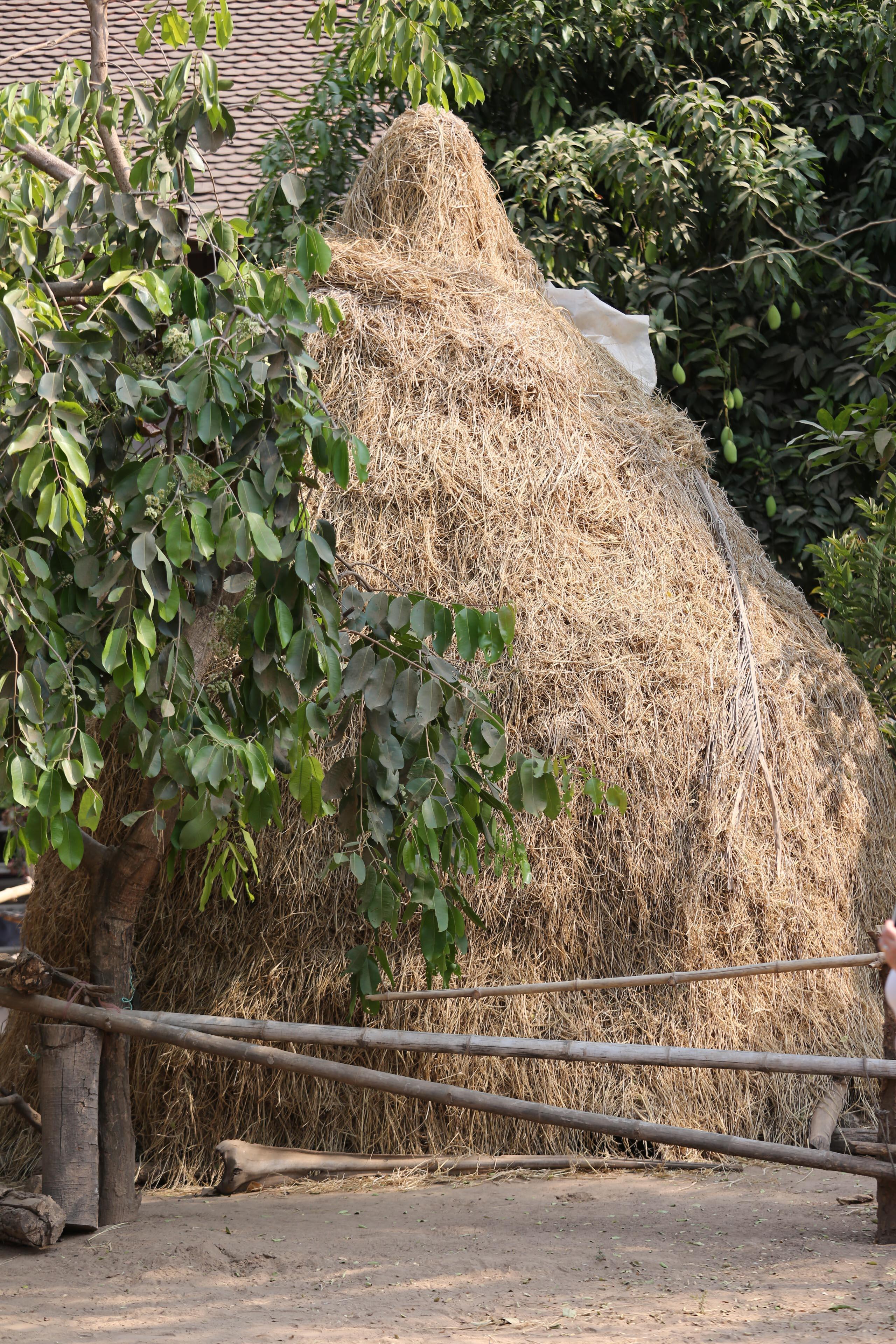 Villiage Hay Stack-1